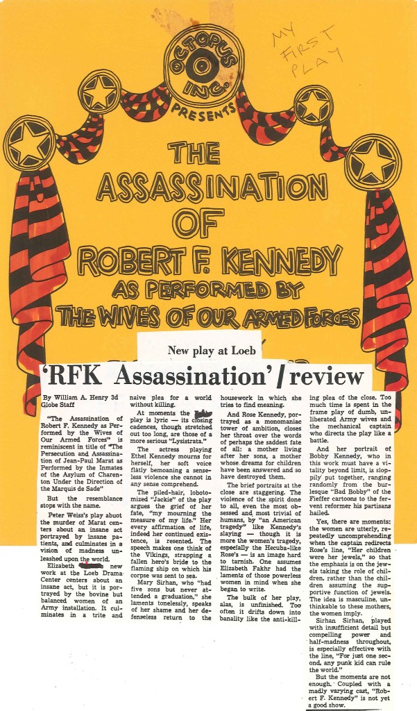 assassination of robert f kennedy review